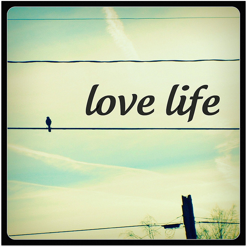 Love Life First Creating A New Earth Together