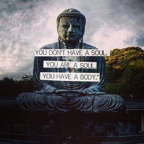 you are a soul